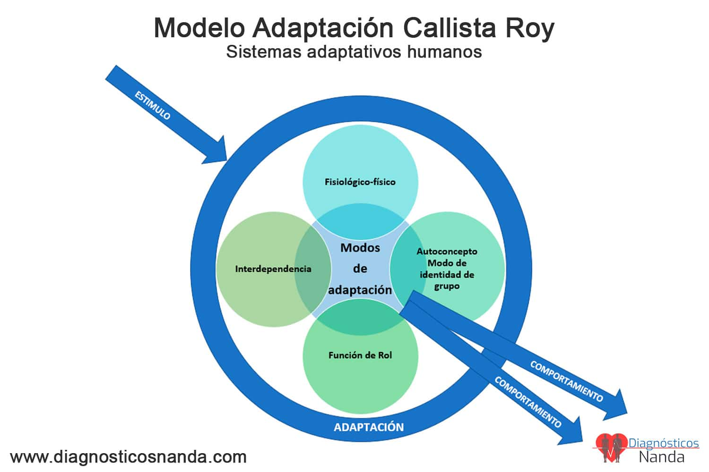 Modelo Adaptación Calista Roy Sistemas adaptativos humanos